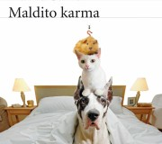 libro-ebook-maldito-karma-david-safier
