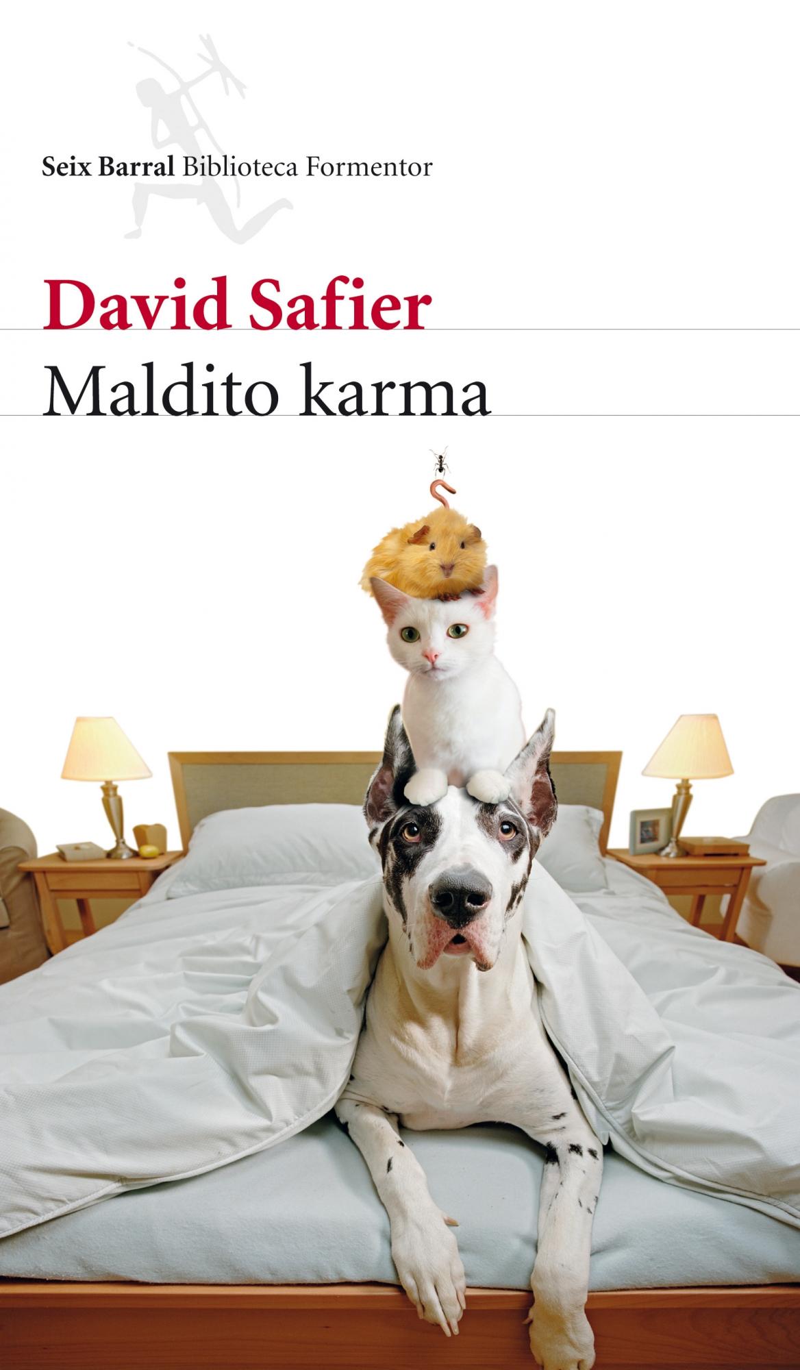 libro-ebook-maldito-karma-david-safier