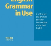 english grammar in use cambridge university press